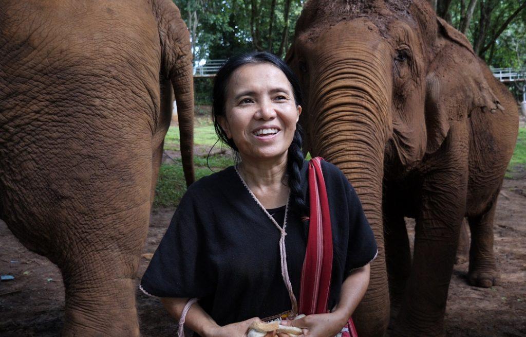 Lek Chailert etikus elefánt park