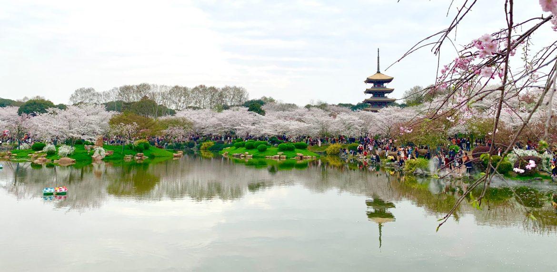 Wuhan aranyhét turizmus