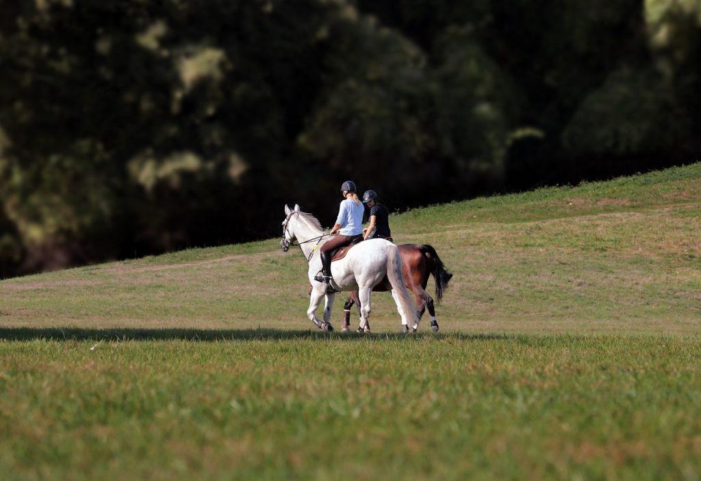 Vál lovaglás