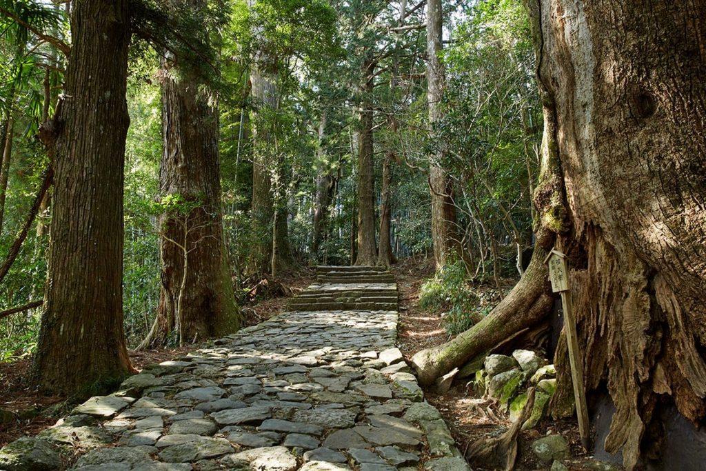 Amanemu japán nemzeti park wellness hotel szálloda fürdőszoba gyógyfürdő erdő