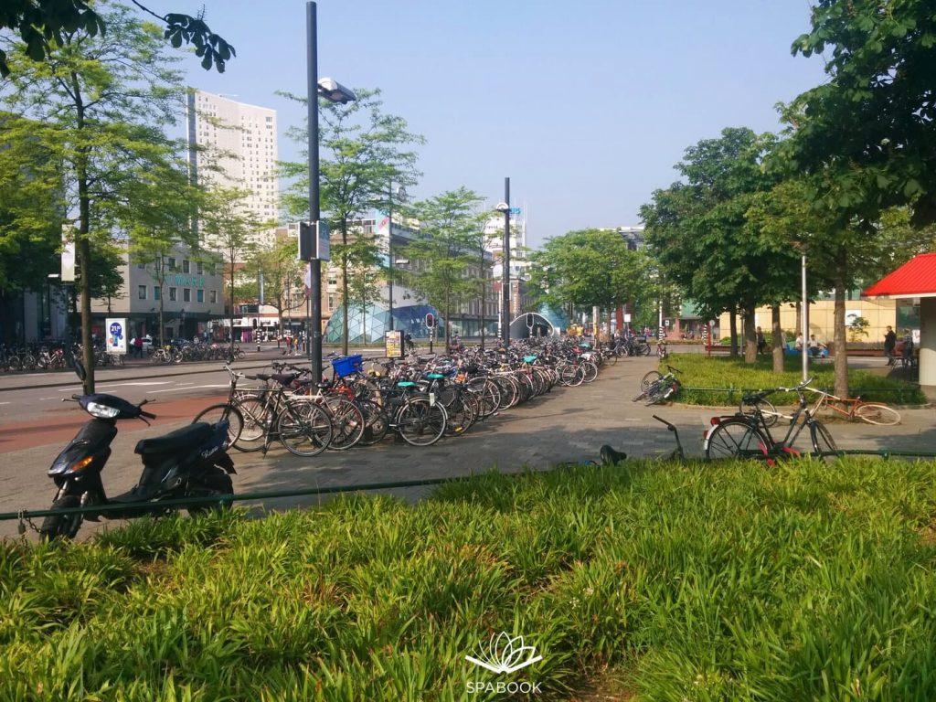 Hollandia beutazás teszt karantén nélkül szabadon